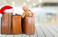 Bed Bug Prevention Tips for Holiday Travel Image